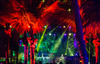 036_170114_phish_mexico_photo_rene_huemer__MG_6598.jpg